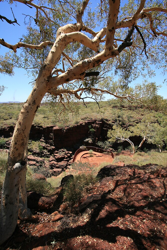 Lookout, Karijini National Park by Leigh Penfold