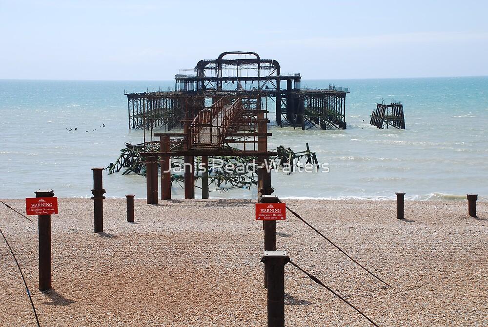 west pier brighton 2 by Janis Read-Walters