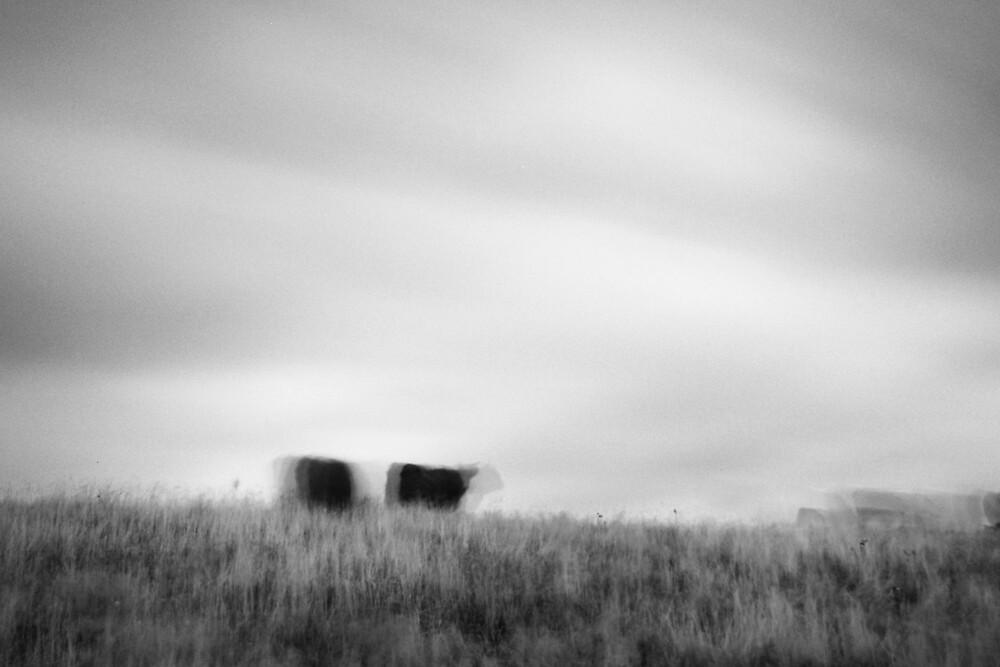 Wait by Morten Bentzon
