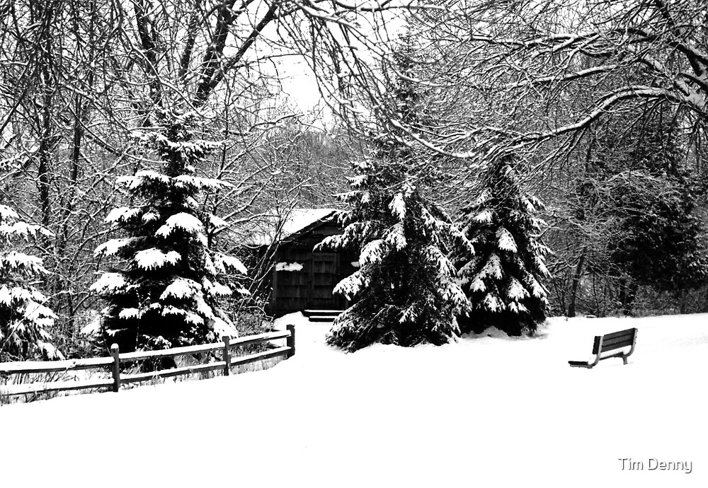 Winter in Wisconsin by Tim Denny