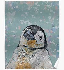 Baby Penguin Snowflakes Poster