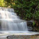 Buderim Falls by Jeannine de Wet