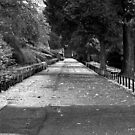 The Long Walk by Chris Clark
