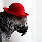 My hat by Ellen van Deelen