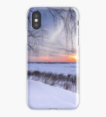 Birch trees and setting sun on the edge of a winter forest iPhone Case/Skin