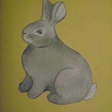 Bunny Rabbit Pencil Drawing Tri Blend T Shirt By Bunnyang Redbubble
