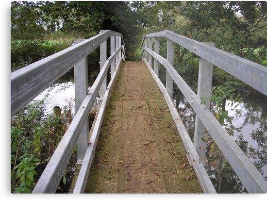 It's Water Under the Bridge by Melissa Contreras