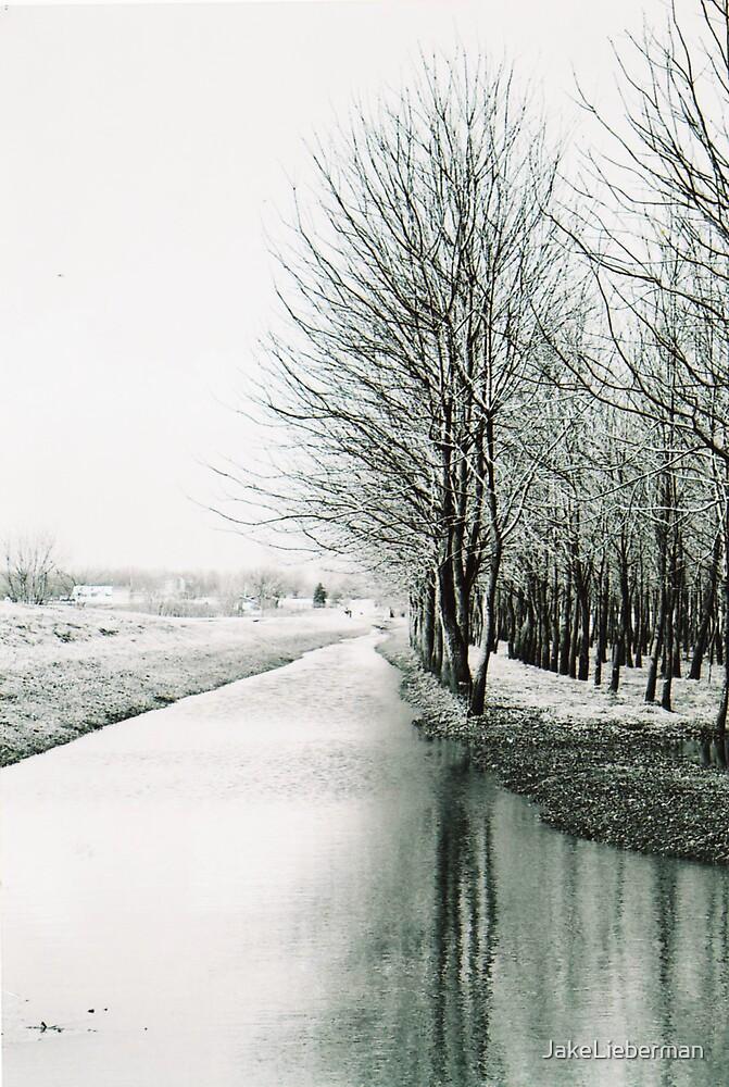 Winter Tree Line by JakeLieberman