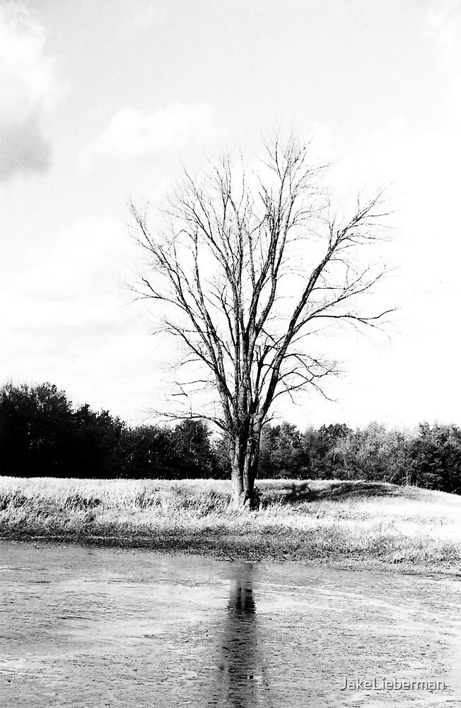 Alone on the Water by JakeLieberman