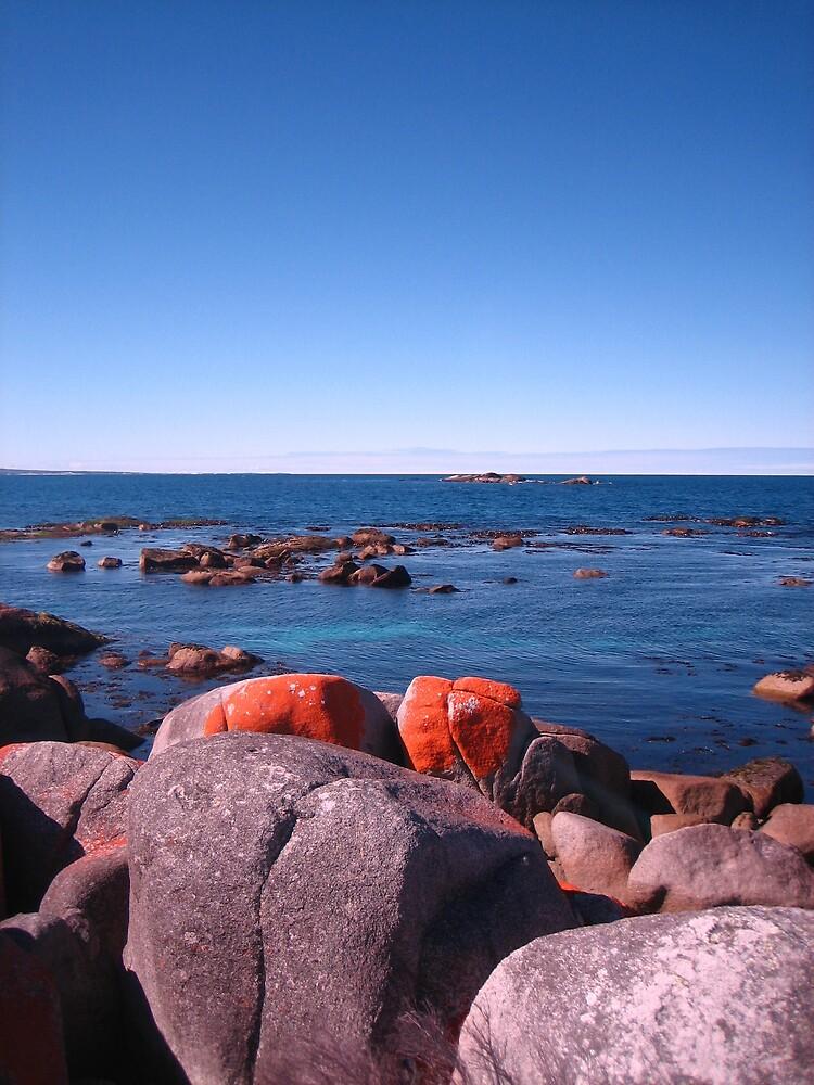 Red Rocks at Burns Bay, Tasmania 2 by LoopGoose