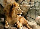 Aslan - Lion of Judah by Scott Denny