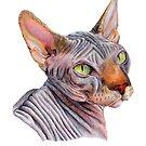 Sphynx Cat Illustration by lpodraw