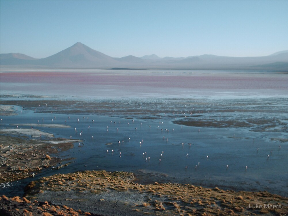 Laguna Colorada by Luke Meers