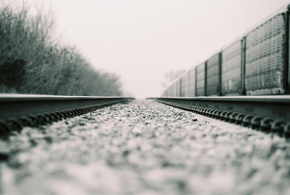 tracks by adamjones
