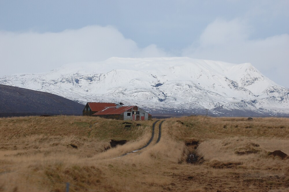 Iceland Farm by kleew22