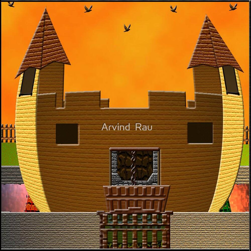 ODD HOUSE by Arvind  Rau