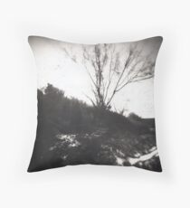 Animas River Pinhole Throw Pillow