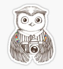 Drawing owl with camera Sticker