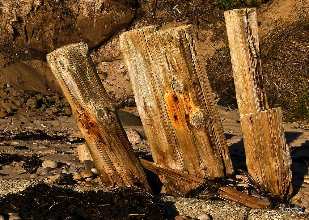 Four Sticks by Kofoed