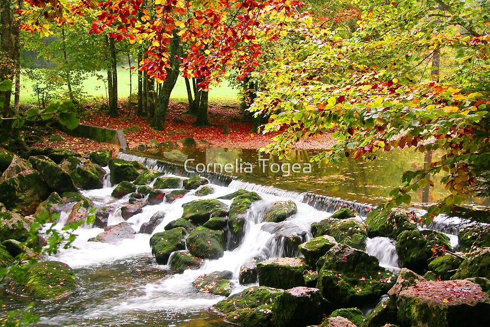 flow river, flow by Cornelia Togea