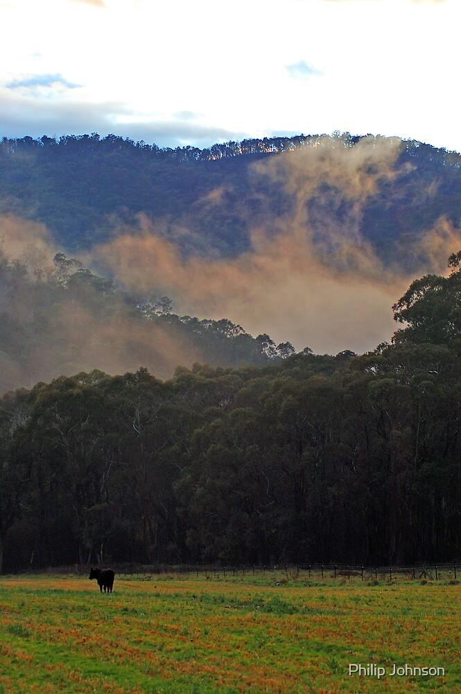 Alpine Awakening - Harrietville, Victoria Australia by Philip Johnson
