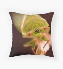 Green Grocer  Throw Pillow