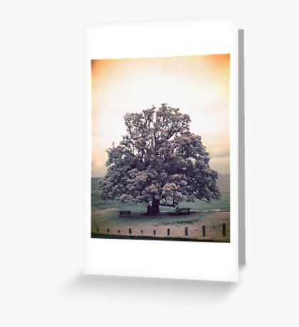 Grand Illusion Greeting Card