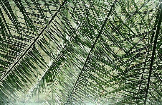 Green World III. by RMBlanik