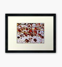 New Life - King Crimson Framed Print