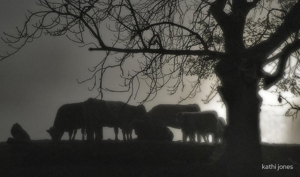 cattle by kathi jones