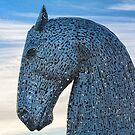 Kelpie Horse  by M S Photography/Art