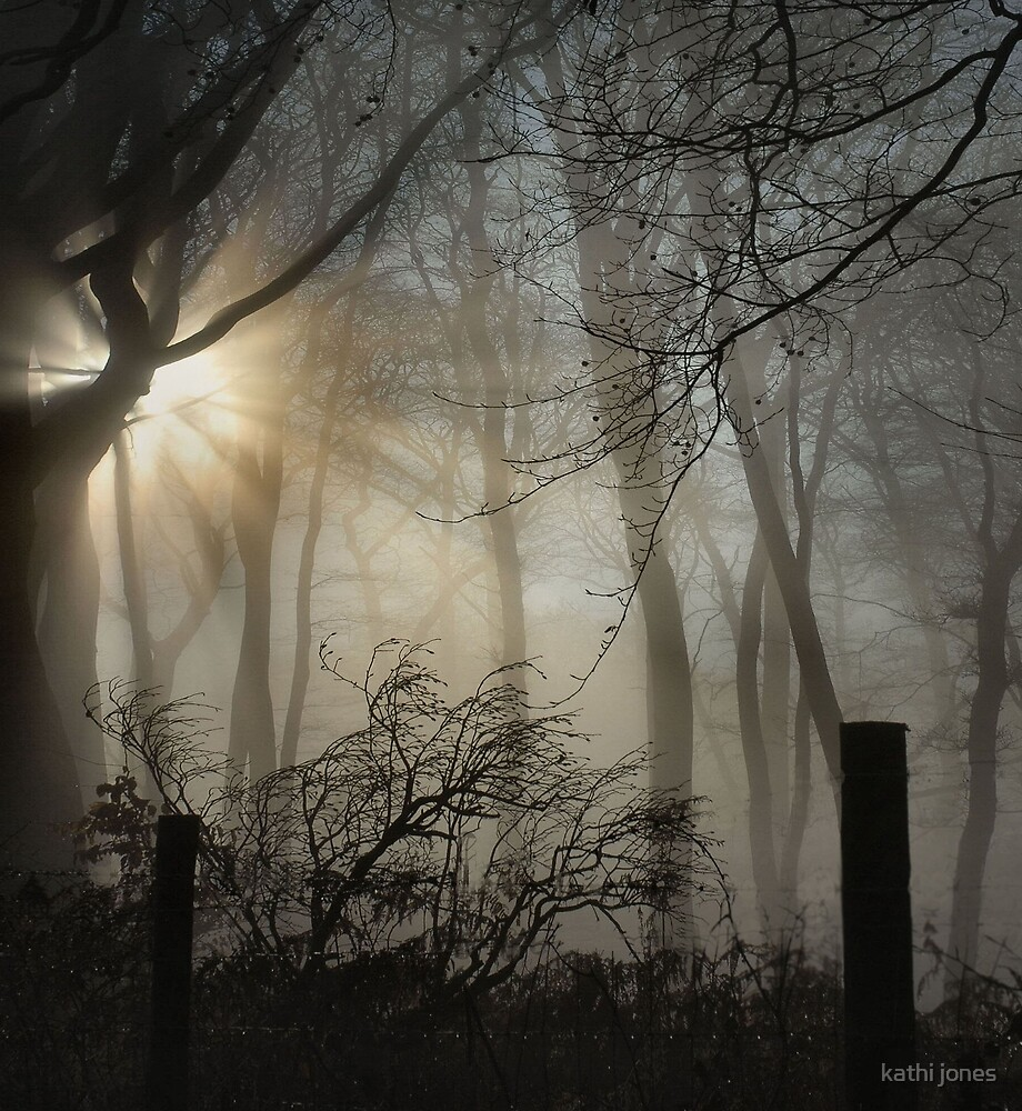 woods in fog by kathi jones