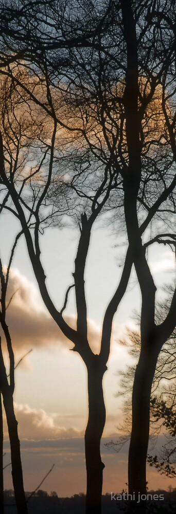 autumn trees by kathi jones