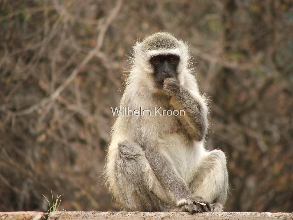 Monkey I by Wilhelm Kroon