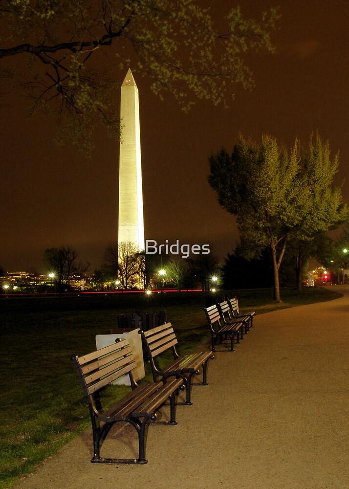 Night Time In Washington, DC by Bridges