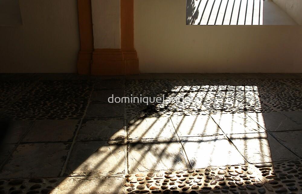 the window by dominiquelandau