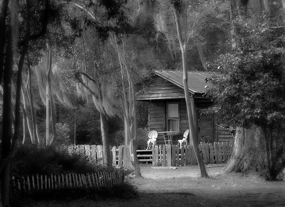 Behind The Mansion by AcadianaGal