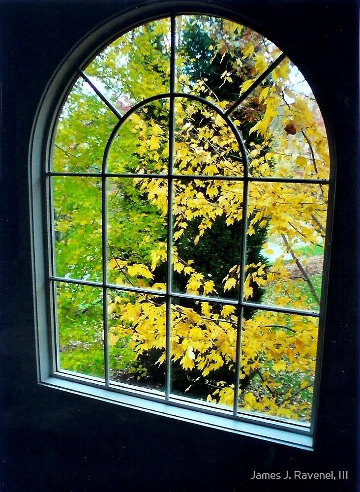 William's Window by James J. Ravenel, III