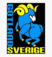 GOTLAND, SVERIGE Photographic Print