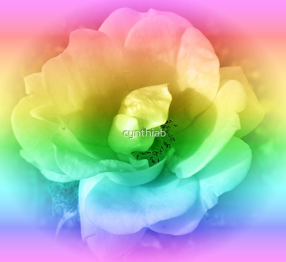 rainbow rose by cynthiab