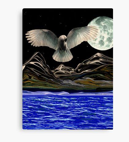Spiritual Acceptance Canvas Print