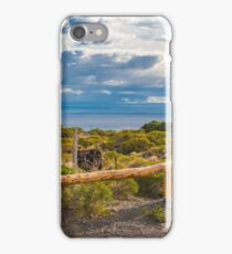 Del Valle Viewpoint, Los Antiguos, Argentina iPhone Case/Skin