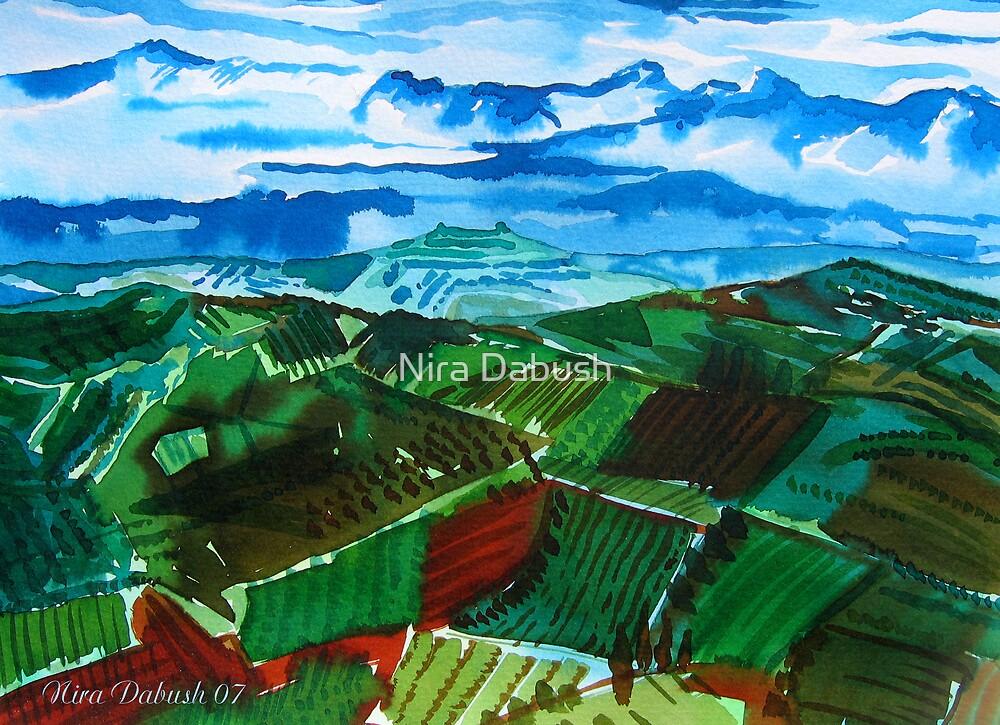 Plowed Fields by Nira Dabush