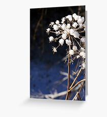Ice Blossoms Greeting Card