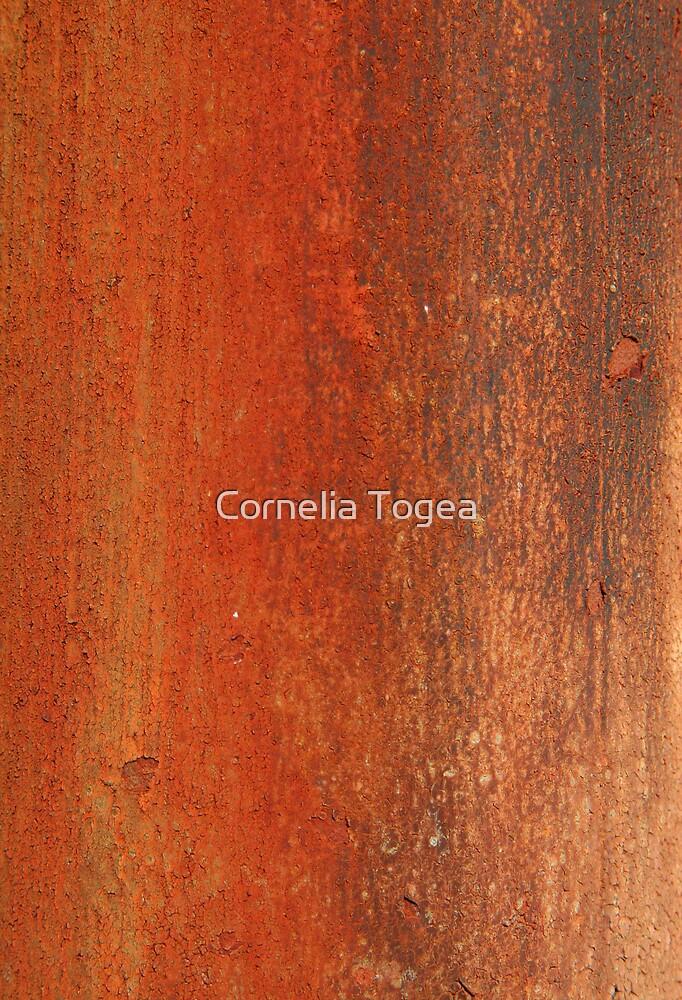 rust by Cornelia Togea