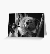 Koala 1 B&W Greeting Card