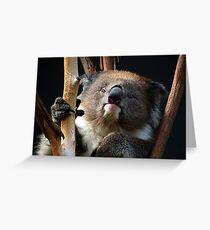 Koala 1 Greeting Card