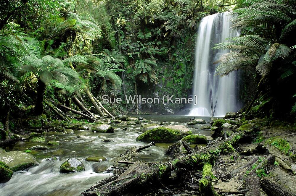 Beuchamp Falls, Victoria by Sue Wilson (Kane)