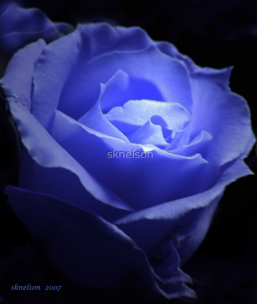 Once in a Blue Moon by sknelson