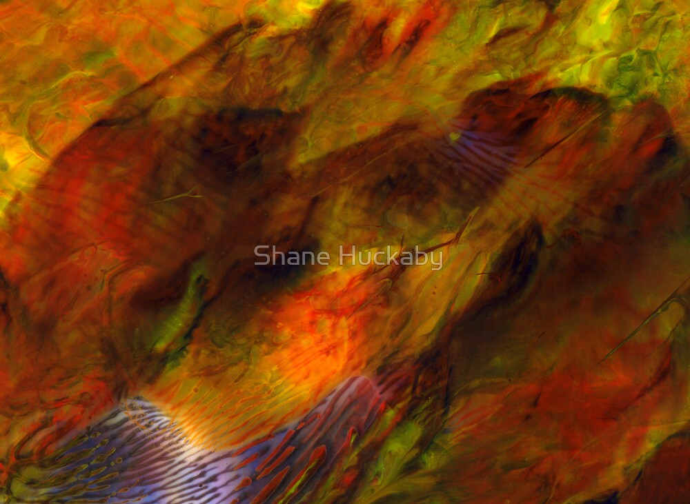 Lost In The Music by Shane Huckaby